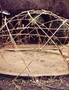 bambooDome